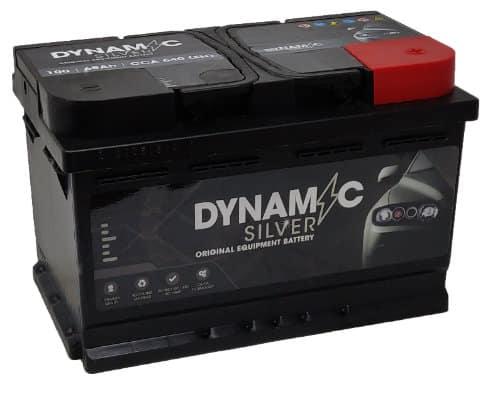 Dynamic Silver 100 Dynamic Silver