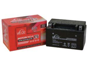 Leoch LTZ10-4 Leoch (YTZ10S) Battery